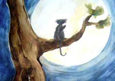 L'opossum qui avait l'air triste